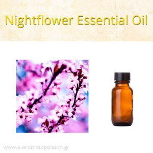 Cestrum nocturnum (Nightflower) essential oil