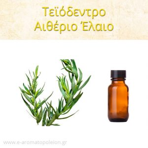 Τεϊόδεντρο, Αιθέριο έλαιο